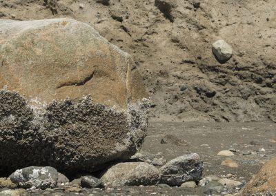 Rock in Bluff
