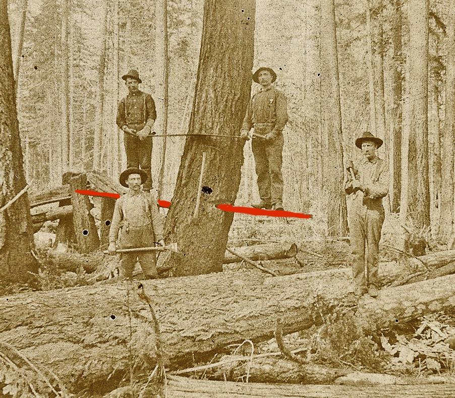 8b-logging in Vinland-4 arrows
