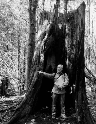 An old Western Cedar stump. B&W highlights the somber mood of this long-dead tree.