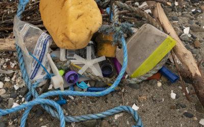 Plastics & Our Salish Sea