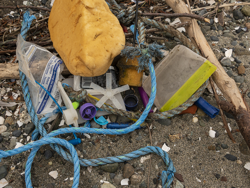 Plastics & Our Salish Sea